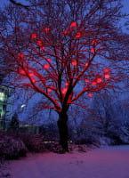 Moonlight Pendelleuchte MLH Weiß Farbfilter rot Ambiente Baum Schnee Nacht