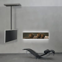 TV-Halter Ceiling art116 (verschiebbar, 270° drehbar)