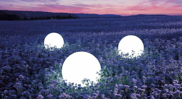 Moonlight Vollkugel MFL Ambiente Außen Blumenfeld Nacht