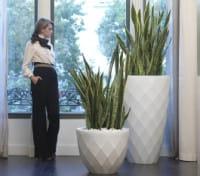 Pflanzgefäß Vases - 55 cm